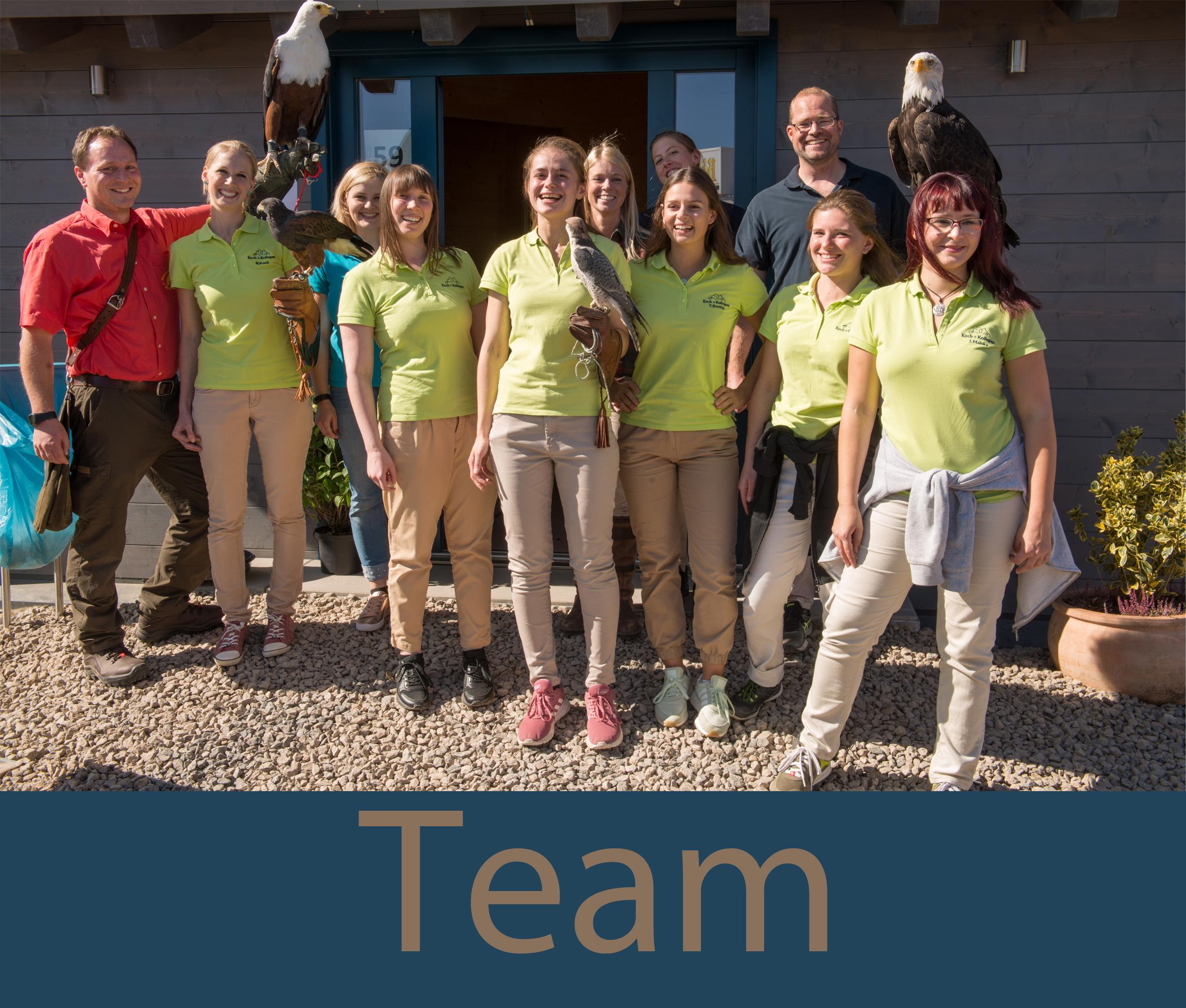 Team Startseite